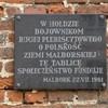 Uroczystości 11 lipca w Malborku