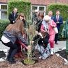 Wspólne sadzenie drzewek