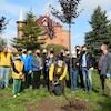 Dzień Drzewa 2020